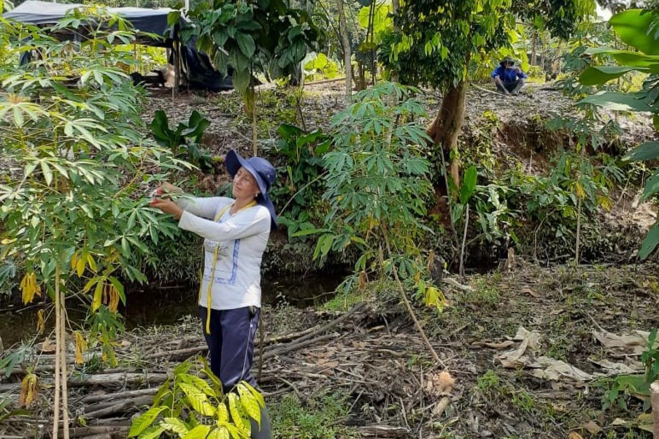 Pueblos indígenas: Las mujeres toman las riendas dentro y fuera de sus comunidades